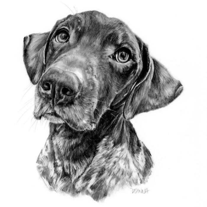 Dog portrait by pet portrait artist Deanna Lee
