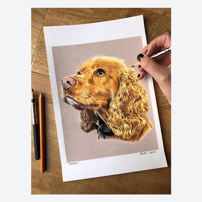 Dog portrait by Hayley Smith