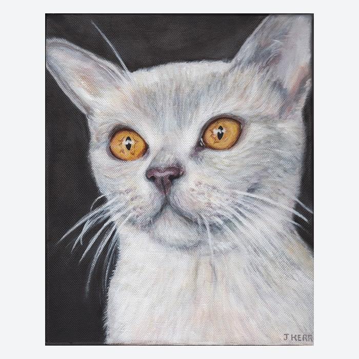 Cat portrait by pet portrait artist Jess Kerr