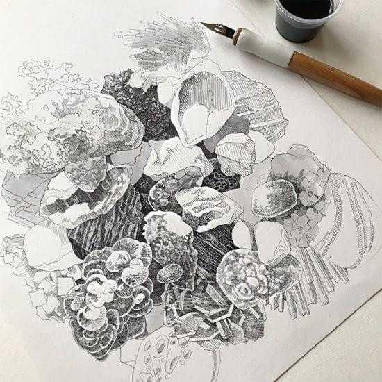 Song Kang illustration