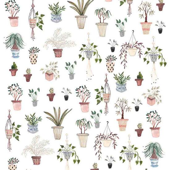 Boccaccini Meadows pattern