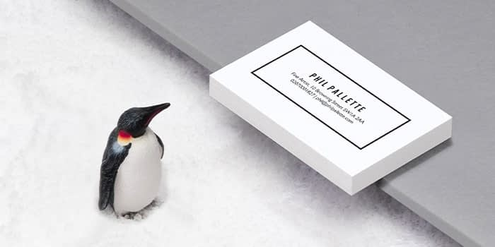 Pile of extra thick white business cards with a minimalist design making use of negative space on a white background next to a penguin figurine