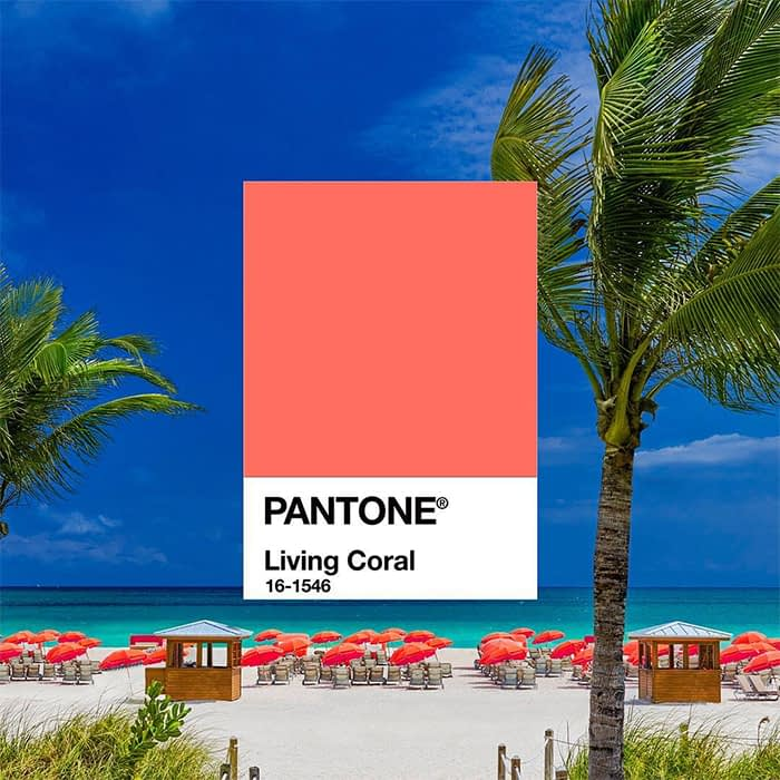 MOO Blog | Pantone Colour of the Year 2019: Living Coral