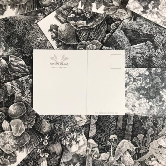 Song Kang postcard