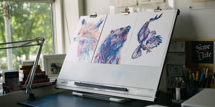 Claudine O'Sullivan Animal Illustrations
